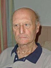 Zahler Ferdinand
